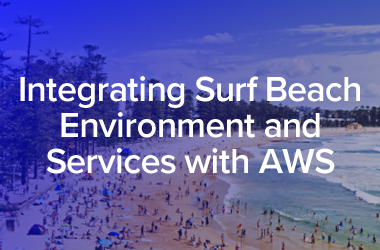 Integrated Surf Beach Environment and Services